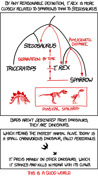 birds_and_dinosaurs
